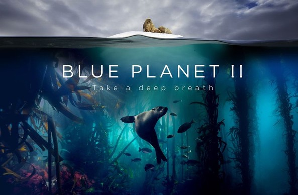 Did you watch it; Blue Planet 2; We told you so!